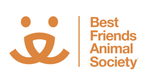 Eleventy is proud to assist Best Friends Animal Society with all the great work they do