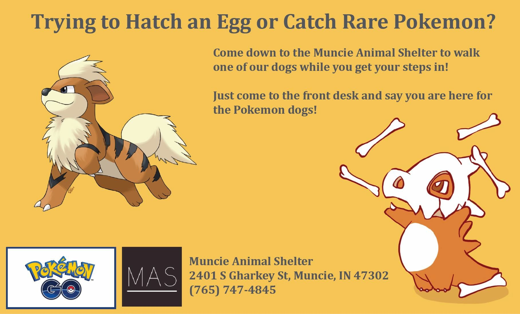 Muncie Animal Shelter Pokemon Go marketing